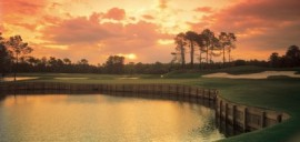 Golf Vacations at Beach Colony Resort